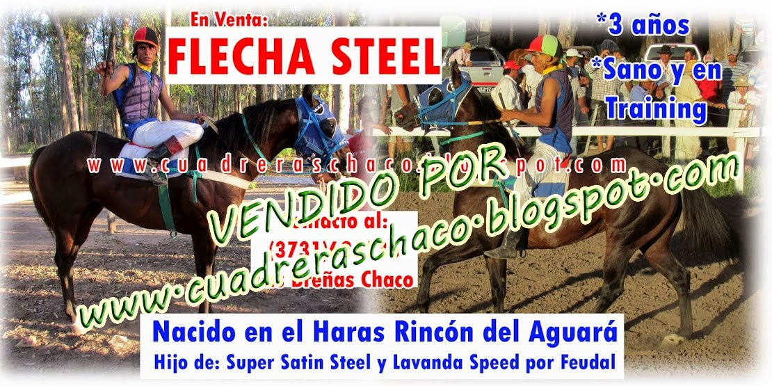 FLECHA EN VENTA 21-6-14