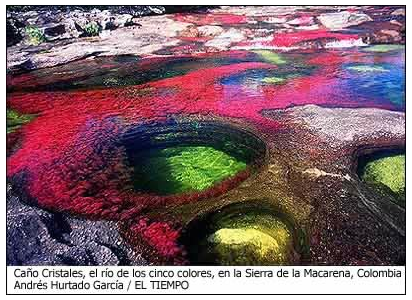 Fotos de Caño Cristales por Andrés Hurtado