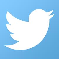social media advertising, Twitter
