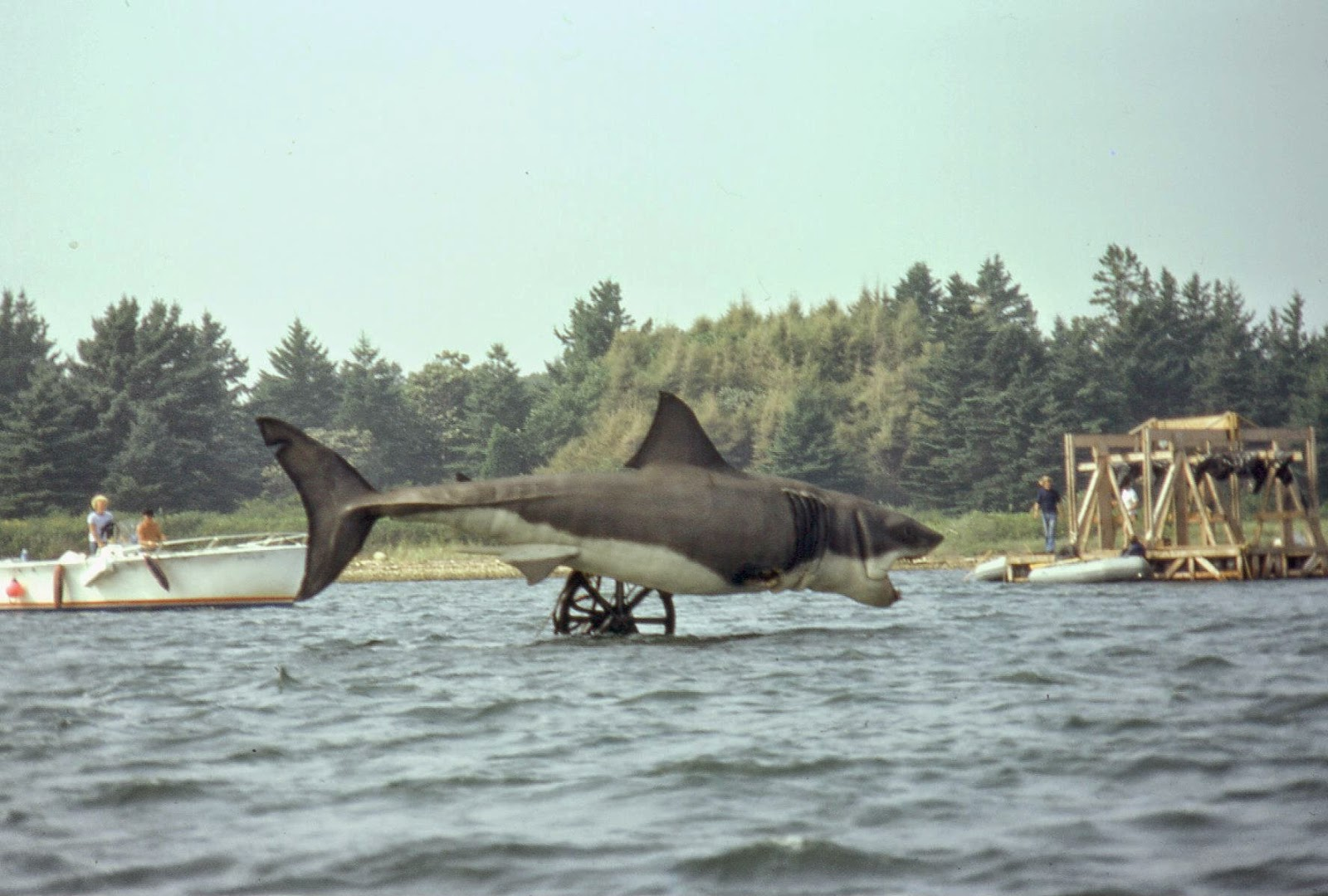 Color Photos From The Filming Of Jaws On Katama Bay