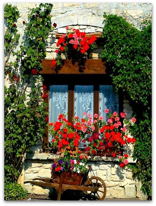 Sweet sweet home finestre e balconi fioriti decorazioni - Idee per terrazzi fioriti ...