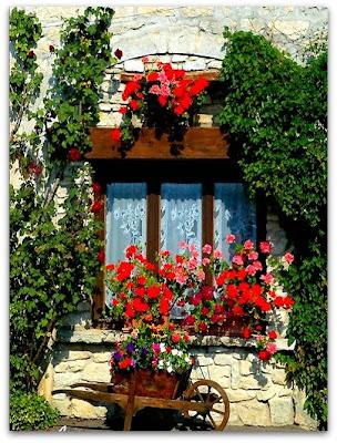 Sweet sweet home finestre e balconi fioriti decorazioni for Idee per terrazzi fioriti