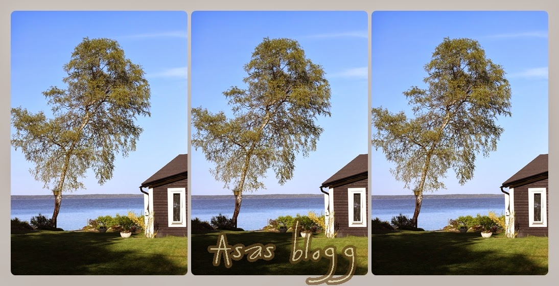 Åsas Blogg