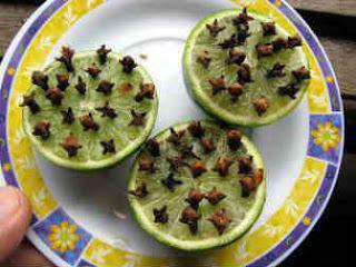 dica-repelente-caseiro-espantar-mosquitos-moscas