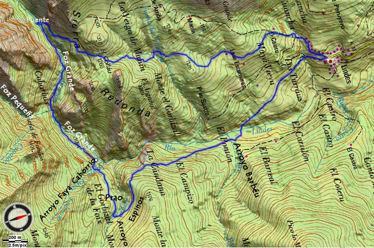 Mapa 4 - Topográfico Bosque de Lindes