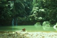 brunei Wasai waterfall