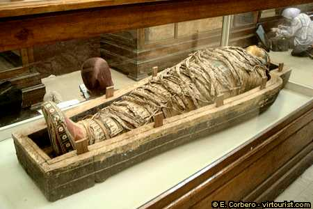 external image cancer+in+ancient+Egyptian+mummy.jpg