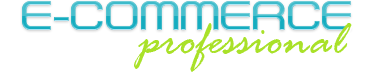 e-commerce professional