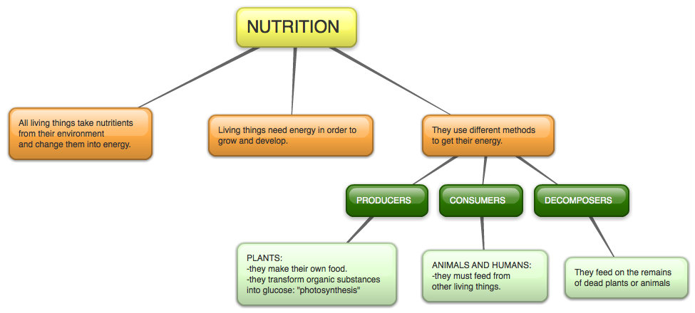 external image Living+things+processes-+nutrition.jpg