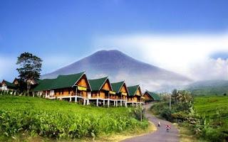 Ribuan Wisatawan Padati Gunung Dempo