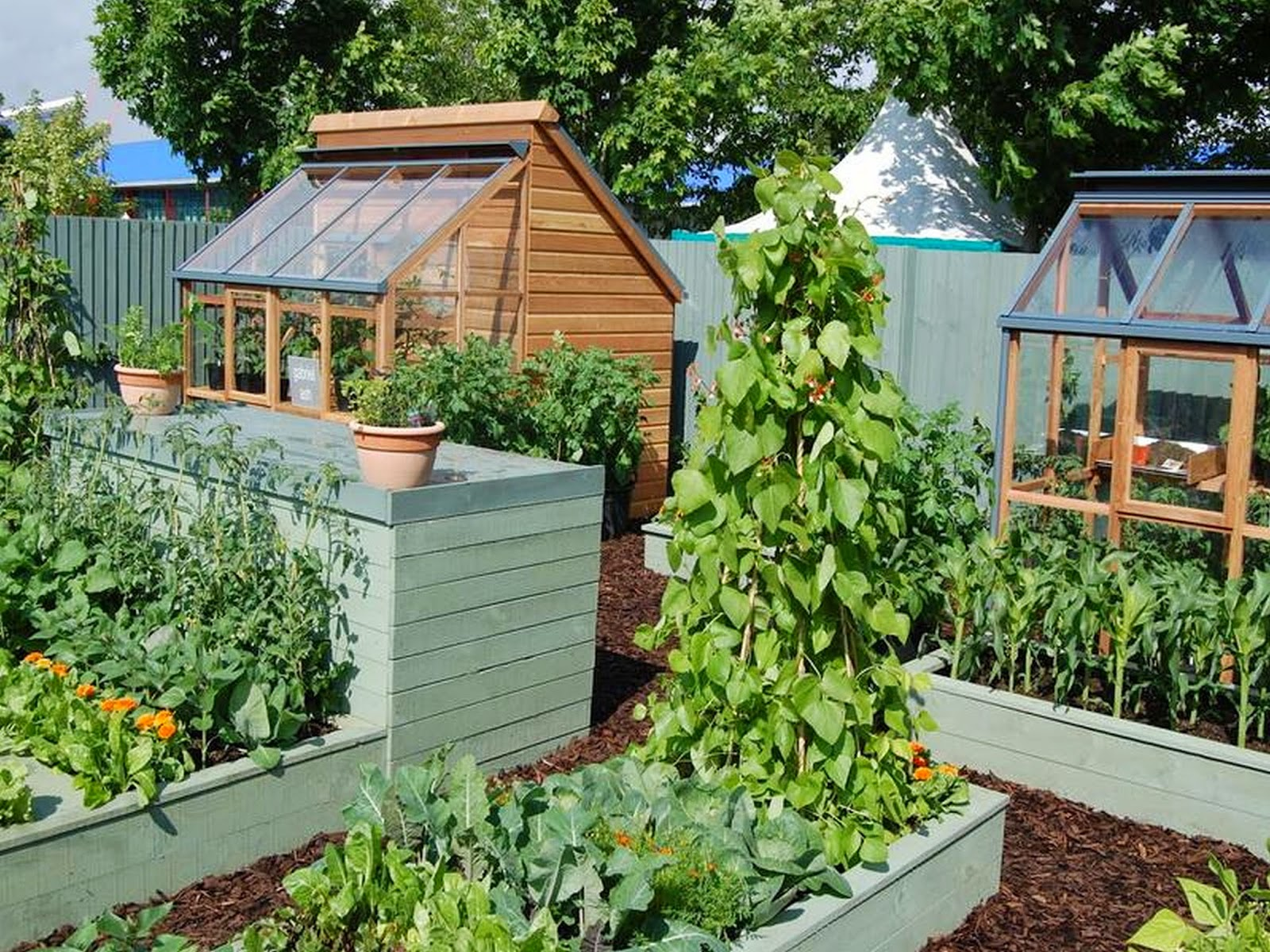 Small Kitchen Garden Design