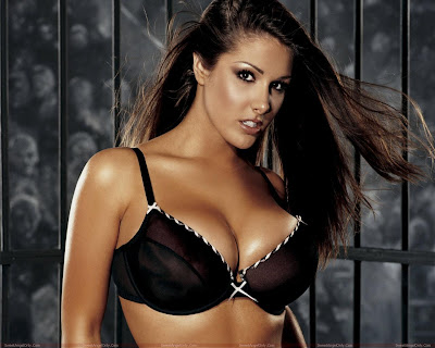 lucy_pinder_glamour_model_hot_wallpaper_07_fun_hungama_forsweetangels.blogspot.com