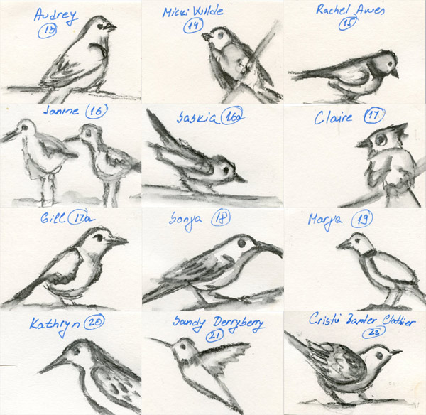 bird sketches Zorana art