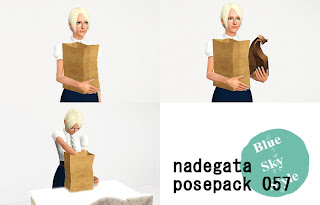 http://blueskystyle.blogspot.jp/2013/11/posepack-057-have-paper-sack.html