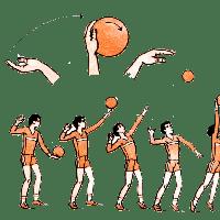 Спортивные уроки. Волейбол.