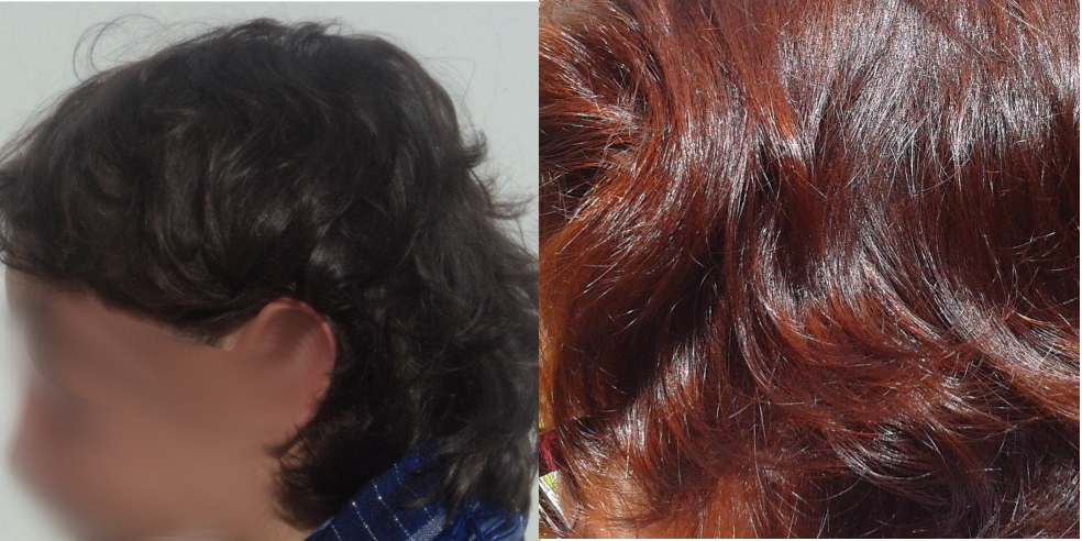 Pelo natural y pelo tras 4 hennas