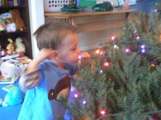 Licking Christmas Lights