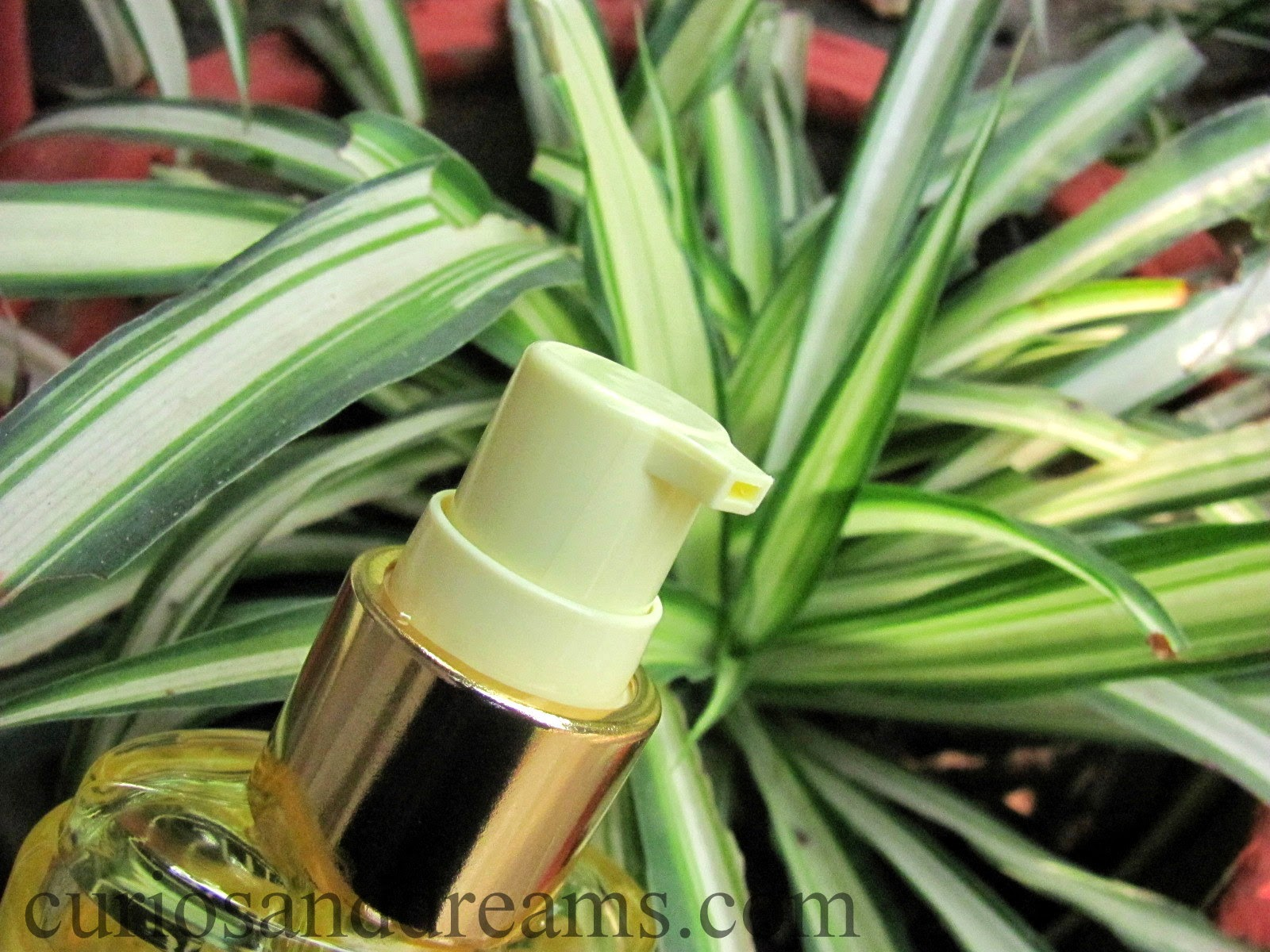 Lotus AloeHydra Moisturising Gel Review