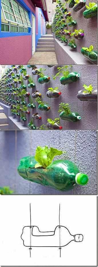 cara membuat pot gantung dari botol plastik bekas