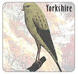 Kenari Yorkshire 2011
