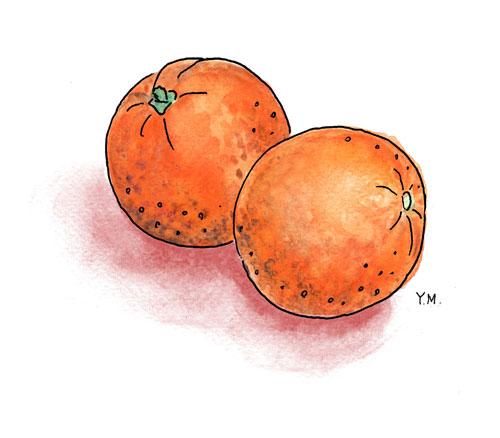 oranges by Yukié Matsushita