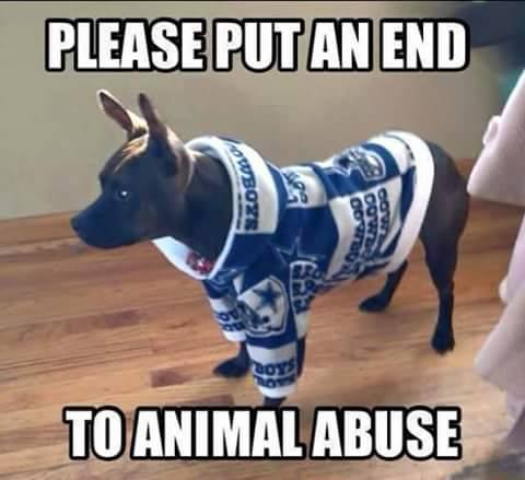 please put an end to animal abuse. #cowboyshaters #dog #cowboysdog #cowboys #nfl