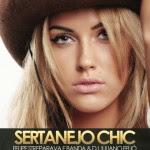 Capa CD Sertanejo Chic Dez Vol.8 (2013) Baixar Cd MP3