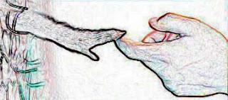 ΄πειράματα σε ζώα