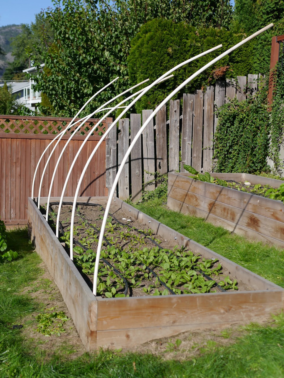 Building Hoop House for a Raised Garden Bed – Backwoods Mama