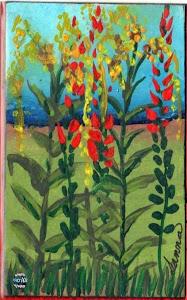 Wild Salvia