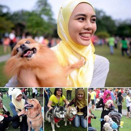 Wow Umat Islam sambut hangat Program Saya Nak Sentuh Anjing 10 Gambar