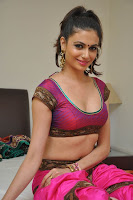 Simran Kaur Mundi Stunning Pics in Traditional Choli Saree