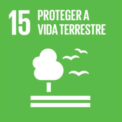 LEMBREMOS A AGENDA 2030 | UM ODS DE CADA VEZ | OBJETIVO 15 | «Proteger a Vida Terrestre»