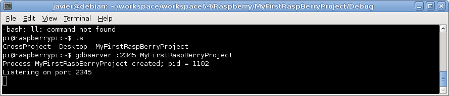 Debian 9 raspberry pi download