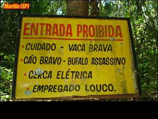 Cuidado !!cerca elétrica, vaca brava, empregado louco