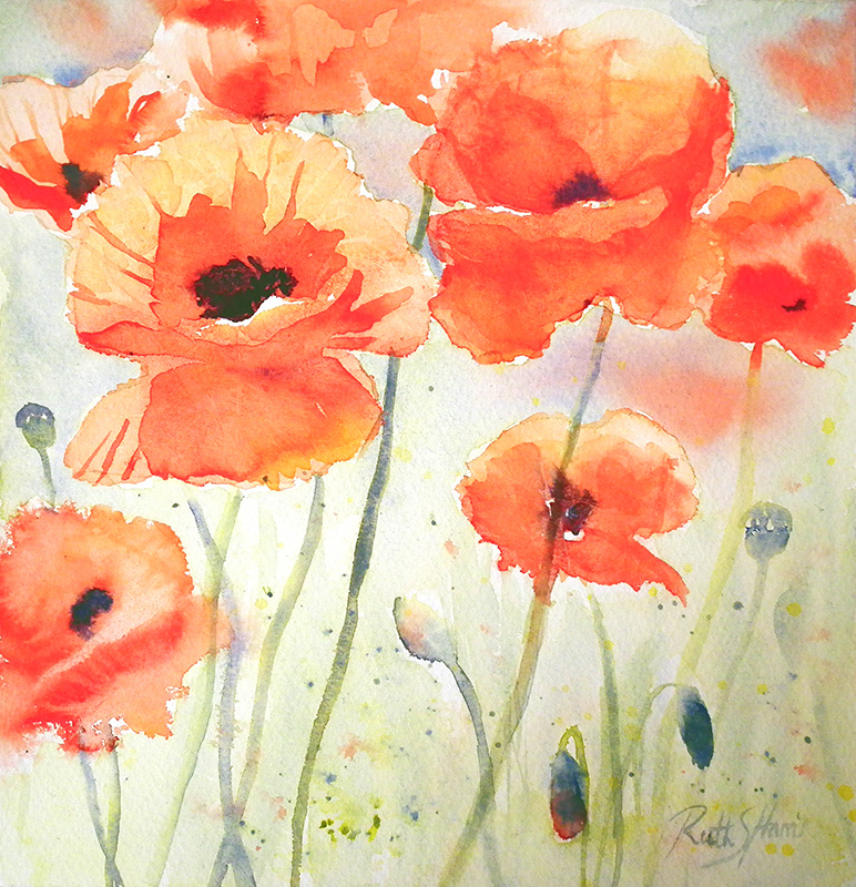 A Passion For Watercolour Papery Poppies