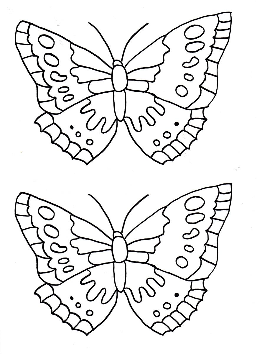 Dibujos Para Pintar Y Colorear De Mariposas Car Memes