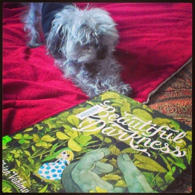 Murchie performs downward facing dog at an angle to Beautiful Darkness, an oversize hardcover comic. Its cover features a pale-skinned blonde woman peering out from behind a stone-grey hand several times her size. Green leaves to the same scale as the hand surround her.