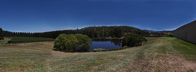 Tarra Warra panorama landscape