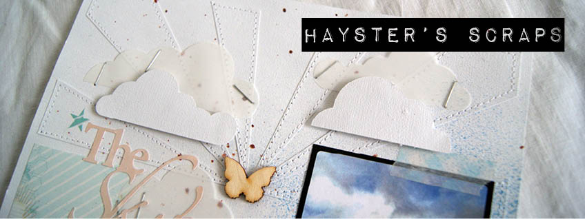 Hayster&#39;s Scraps