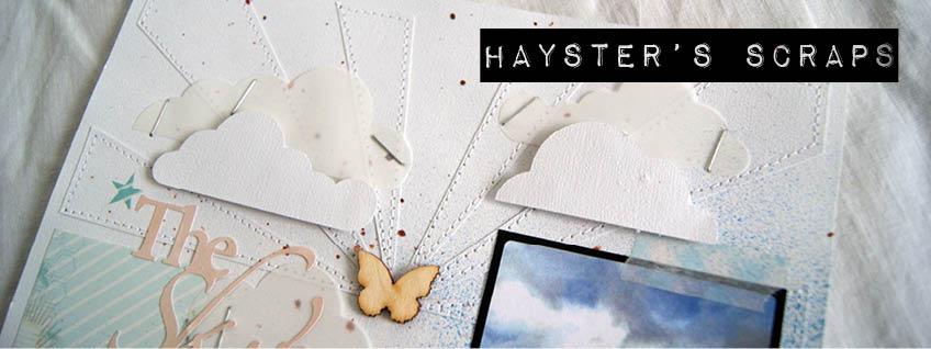 Hayster's Scraps