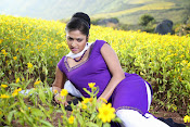 Hari priya photo shoot among yellow folwers-thumbnail-2