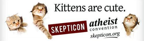 Anúncio ateísta: gatinhos são fofos
