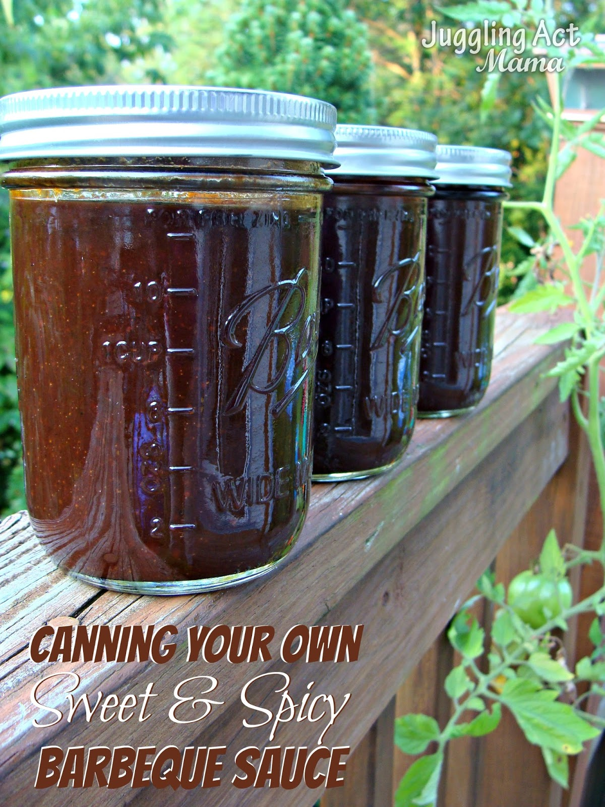 http://4.bp.blogspot.com/-jsrIFsNbkwY/UhOV2MtOzBI/AAAAAAAAIHc/S_3fP1nP5fM/s1600/Canning+Your+Own+Sweet+and+Spicy+Barbeque+Sauce.jpg