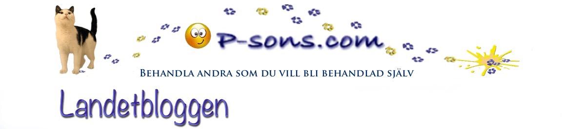 P-sons Landetblogg