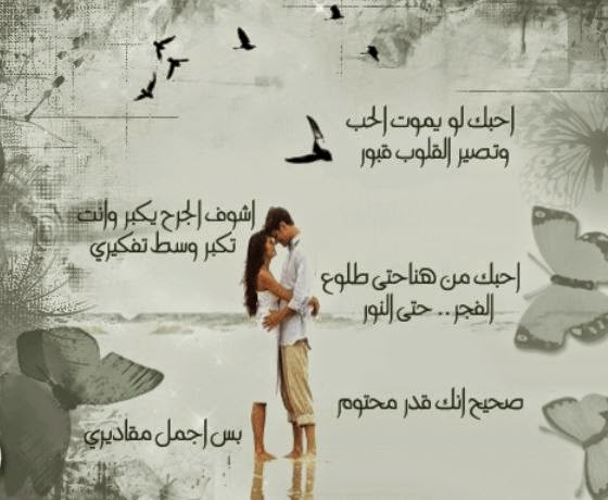 Comment On This Picture Sowar Hob Comment On This Picture | Apps
