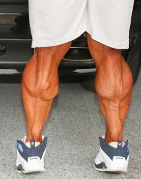 Winstrol Online — How To Develop Muscular Legs