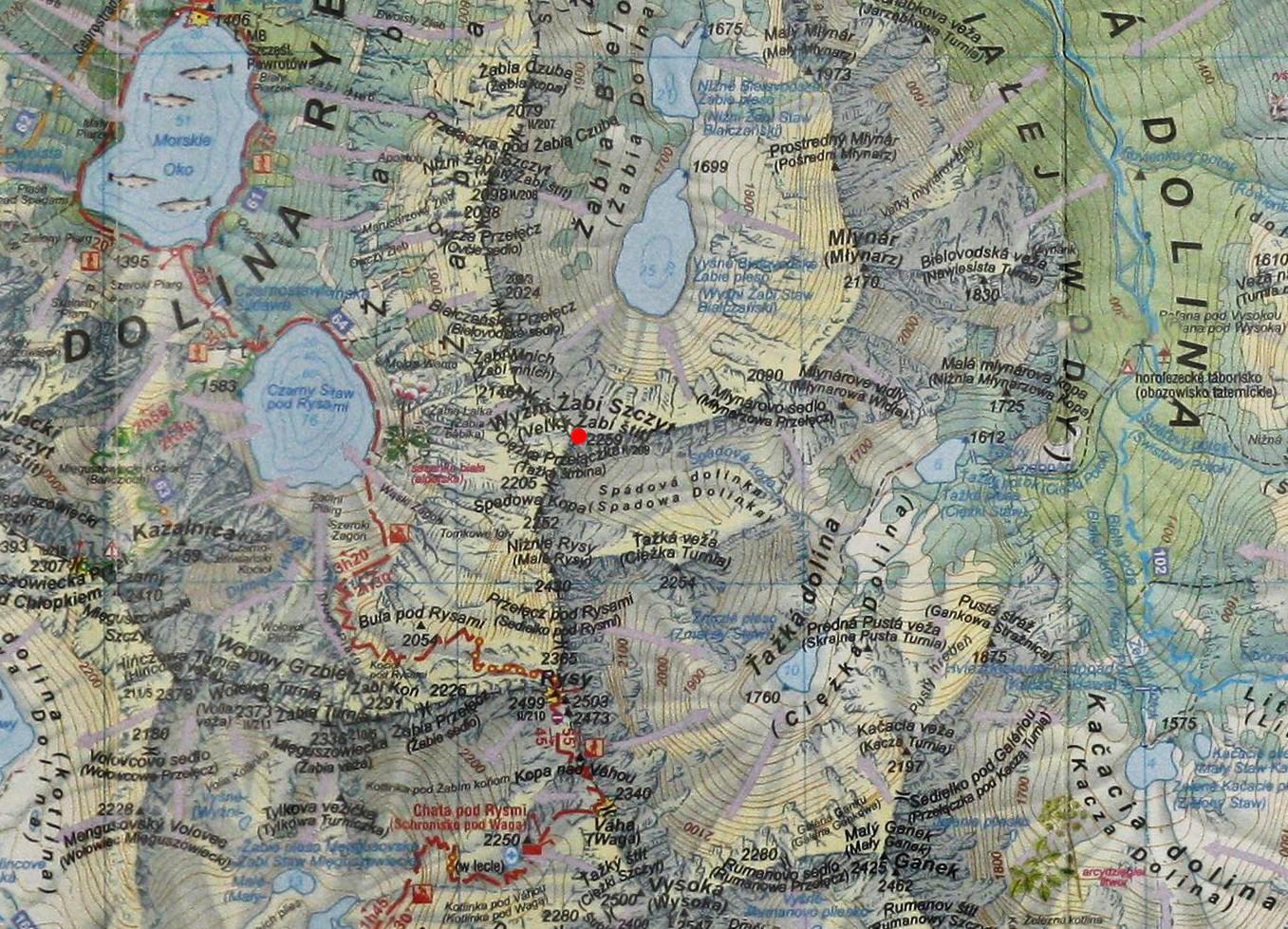 Żabi Szczyt Wyżni na mapie