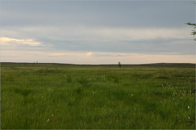 Красноярский край. Таймырский полуостров. Орион.