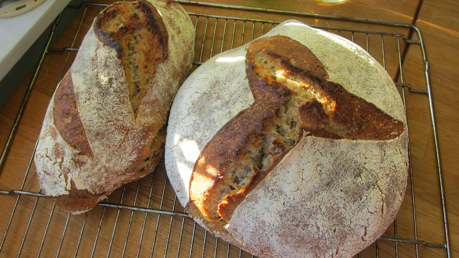 Dalmatian Mom: Bröd : mät runda : Inredning
